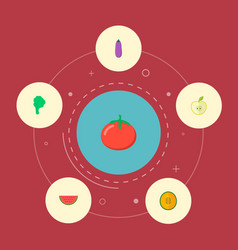 set of vitamin icons flat style symbols with melon vector image