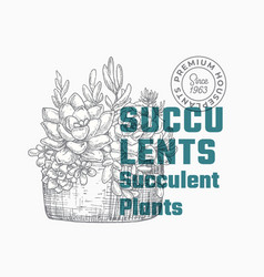succulents abstract sign or label template vector image
