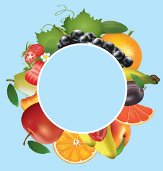 various fruits on blue background vector image