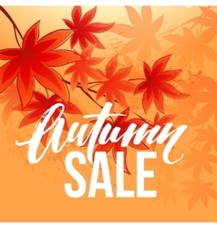 Autumn sale banner with fall leaves vector