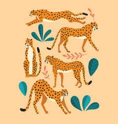 collection cute hand drawn cheetahs on pink vector image
