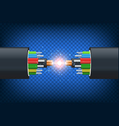 fiber optical cable vector image