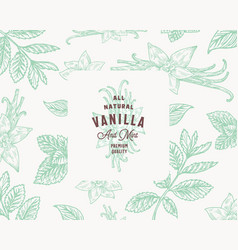 Hand drawn mint and vanilla background vector