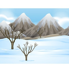 Nature scene with snow on the ground vector image
