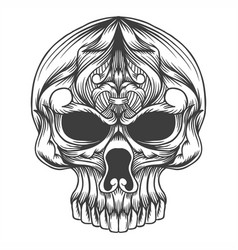 skull head decoration vector image