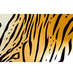 tigerskin6 vector image