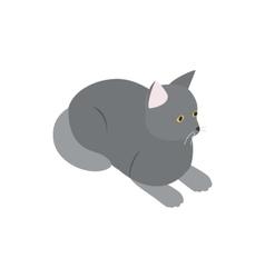Grey cat icon isometric 3d style vector