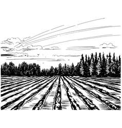 agricultural landscape sketch vector image