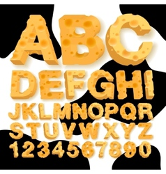 Alphabet and numbers made of cheese vector