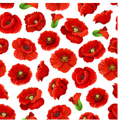 flower poppy floral seamless pattern background vector image