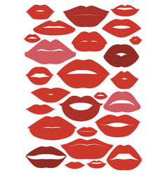 lip shape design vector image
