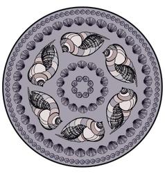 Mandala made of Seashells vector