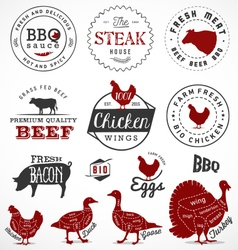 Meat Badges and Labels in Vintage Style vector image