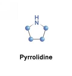 Pyrrolidine tetrahydropyrrole heterocycle vector image