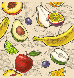 set tropical fruits engraving on craft vector image