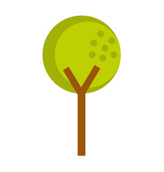 Tree plant isolated icon vector