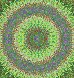 Green mandala ornament background design vector image