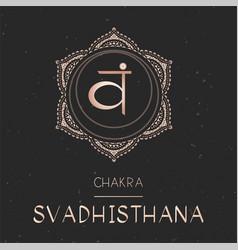 Chakra svadhishana vector