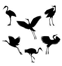 hand drawn black crane birds set vector image