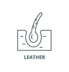 leather line icon linear concept outline vector image