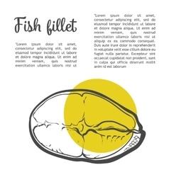 Marine fish fillet of red fish vector