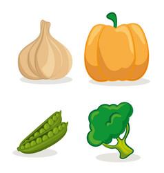 organic vegetables design vector image