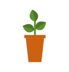 plant icon with vase vector image