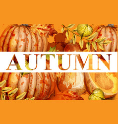 Pumpkin watercolor autumn banner fall vector