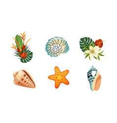 sea shells palm leaves and flowers set tropical vector image