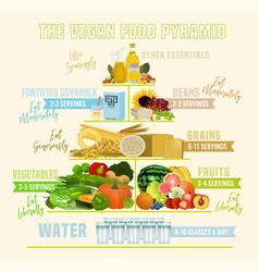The vegan food pyramid vector