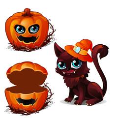 Cat in hat and box of pumpkin halloween character vector