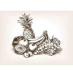 Fruits still life sketch style vector image