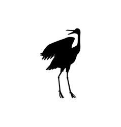 hand drawn white crane bird standing vector image