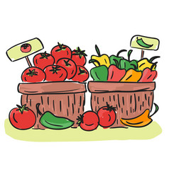 harvest - basket with and vegetables vector image