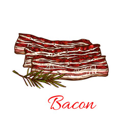 Icon of fresh bacon meat for butchery vector