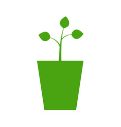 vase icon with plant vector image