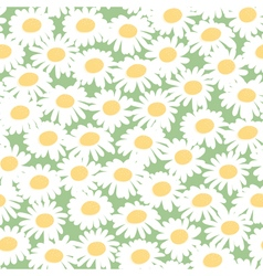 Seamless floral pattern with chamomiles vector image vector image