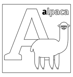 Alpaca letter A coloring page vector