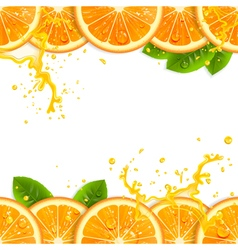 Banner with Fresh Oranges vector image