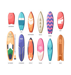 different types of water boards set long vector image