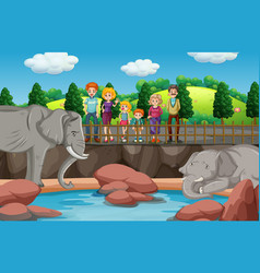 scene with people looking at elephants at zoo vector image