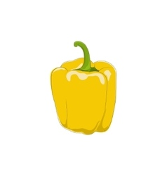 Yellow Bell Pepper Isolated on White vector