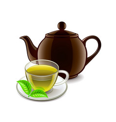 Chinese green tea isolated on white vector image vector image