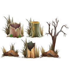 Different type of tree stump vector