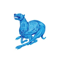 Greyhound Dog Racing Drawing vector image