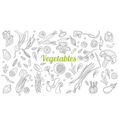 linear graphic vegetables background vector image