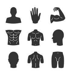 Male body parts glyph icons set vector