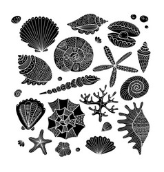 Marine collection ornate seashells for your vector