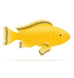 aquarium fish 06 vector image