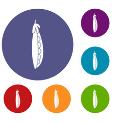 Fresh peas icons set vector